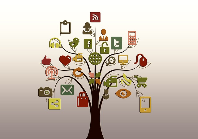 manage your social media